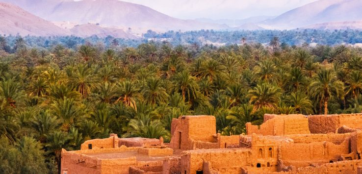 Make the Middle East your next incentive destination